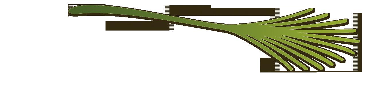 NordMöbel